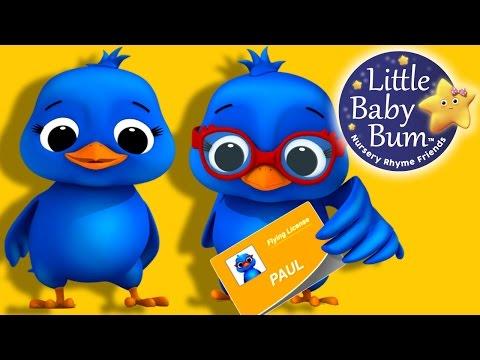 Two Little Dicky Birds  Nursery Rhymes   LittleBaBum!
