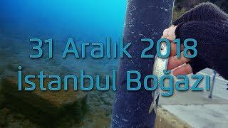 31 Aralık 2018 Boğazda Balık Durumu ve Su Altı Dalış Görüntüleri !!!