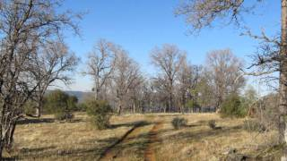 Vacant Land for SALE in Yuba County, CA
