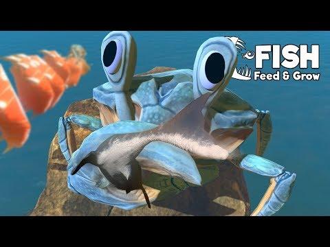 อัพเดทใหม่!! มหึมาปูยักษ์!! โคลอสซอล!! | Fish Feed and Grow #46