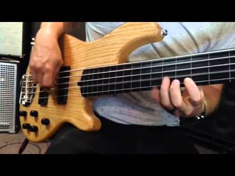 Lakland 55-01 Fretless Bass.