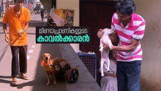 The Man who made wheelchair for Paralyzed Street Dog | Shaleen Mathur