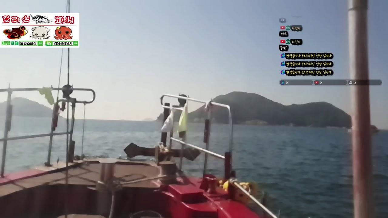 도리스피싱 무늬오징어 탐사