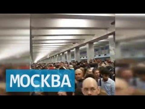 Работа у метро Митино - 120 вакансий на Митино в Москве
