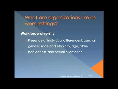 Introduction To Organizational Behavior Chapter 1 YouTube
