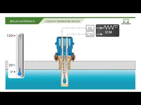 HOW IT WORKS - Temperature Sensor 4051