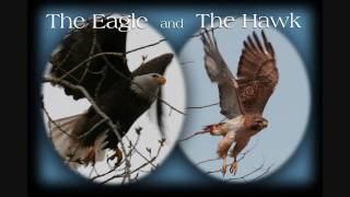 The Eagle and the Hawk ~ John Denver