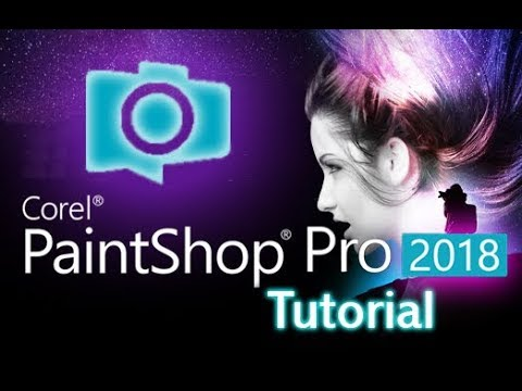 Paint Pro 2018 Tutorial For