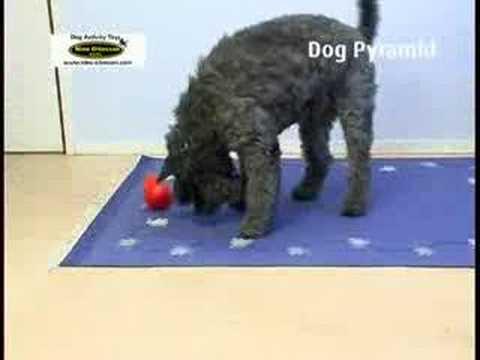 PetsFriends Nina Ottosson Dog Pyramid