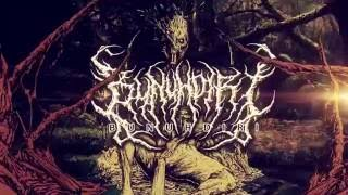 "BUNUHDIRI - ""Dermatillomania"" (Official Lyric Video)"