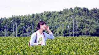 三浦春馬×『お~いお茶』コラボブログ(2008年6月~2009年8月)の画像コ...