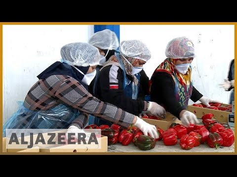 🇶🇦 🇮🇷 Qatar blockade: Surge in food imports from Iran | Al Jazeera English