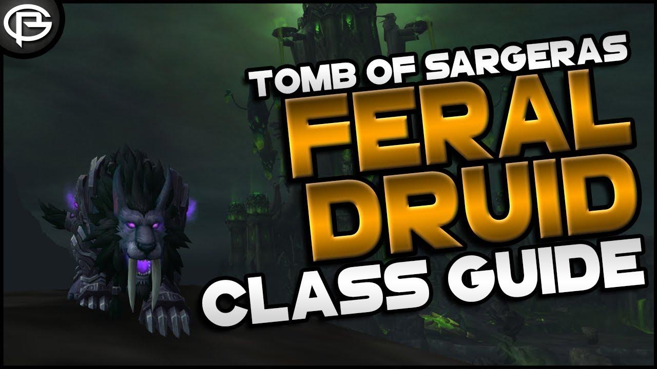 7 2 5 Basic Guides Druid Feral Youtube