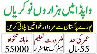 WAPDA Jobs 2019|Latest Government Jobs|Govt Jobs in Pakistan|Punjab Jobs|November Jobs|Educativz