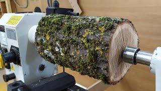 Woodturning oak sugar vase!! ТОКАРНЫЕ работы по дереву ВАЗА из ДУБА !!