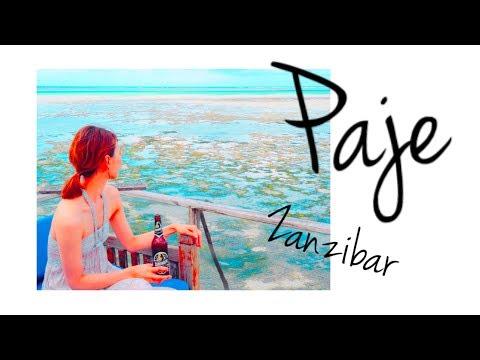 【アフリカ旅Vlog Vol.4】バカンスの地 Paje編【ザンジバル】【タンザニア】