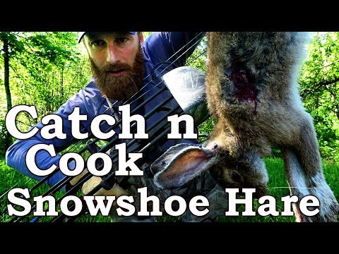 Catch n Cook | Snowshoe Hare BowHunt & Cook Over Open Fire