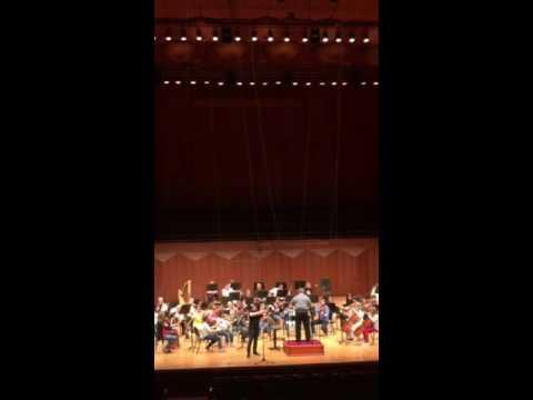 Kонцерт для скрипки с оркестром ре мажор, соч. 35 П.И. Чайковского