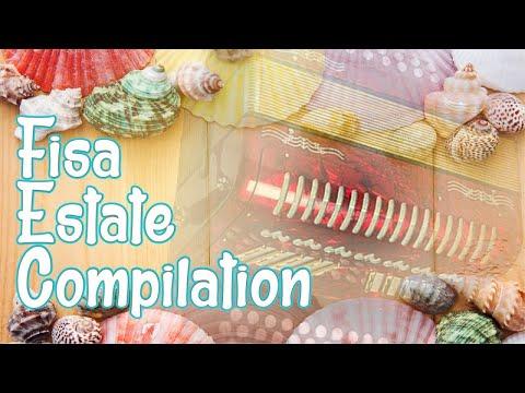 Fisa estate compilation - mix brani fisa per serate ballo liscio (accordion music)