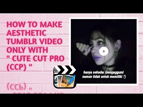 CARA BUAT ASTHETIC TUMBLR VIDEO ~ CCP EDITING