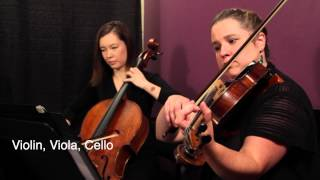Bridal Chorus from Lohengrin (Wagner) for String Trio (Violin, Viola, Cello)