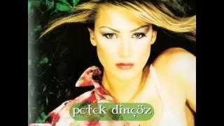 Petek Dinçöz   Sarı Mavi 2002