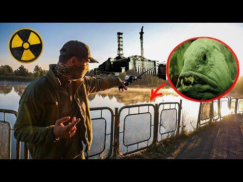 Выловил мутанта из реки Припять возле ЧАЭС. Что будет если жить в Чернобыле?