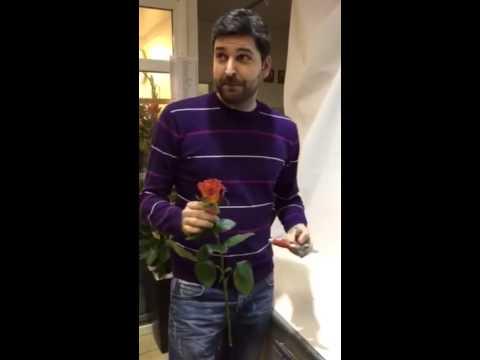 Цветок в стакане. Как сделать приятное своей девушке