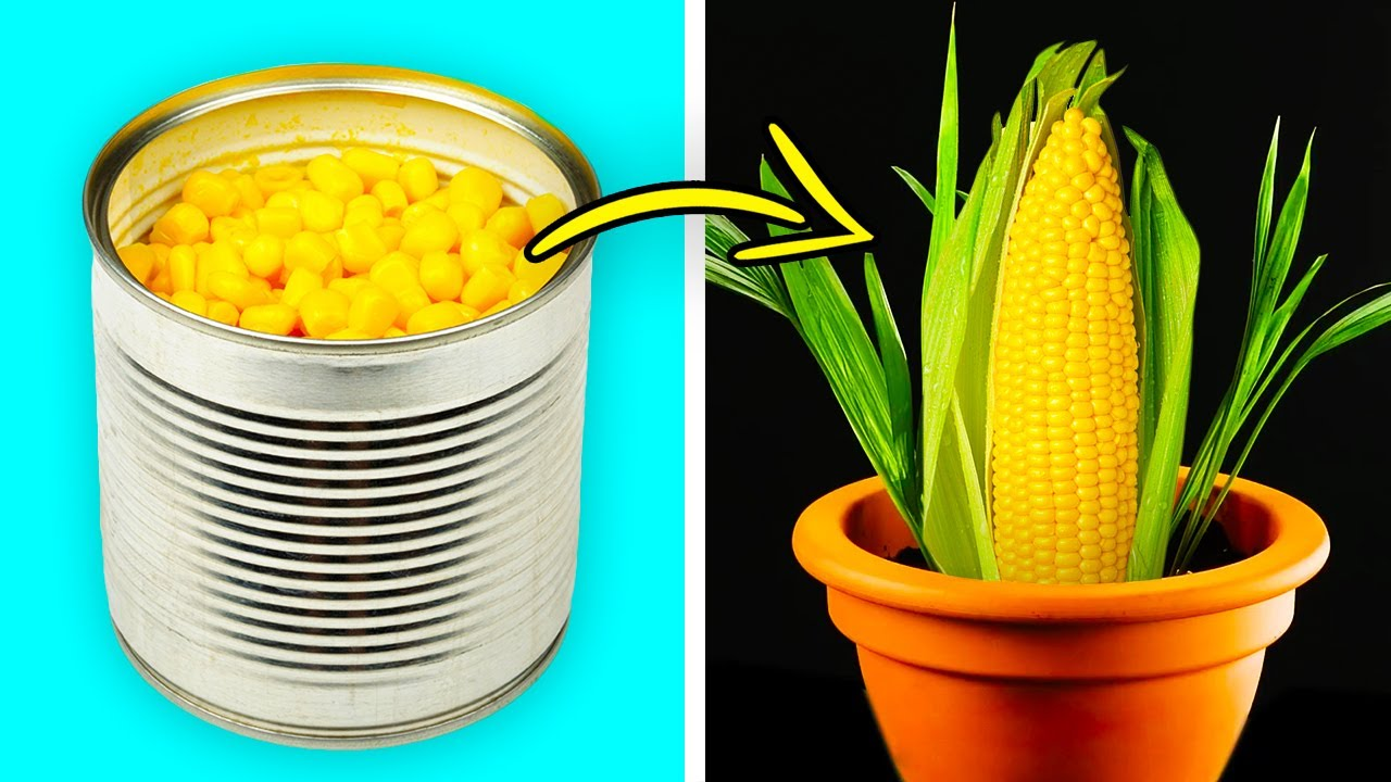 Download 26 BRILLIANT HACKS FOR YOUR GARDEN THAT WILL COST YOU LESS THAN A DOLLAR