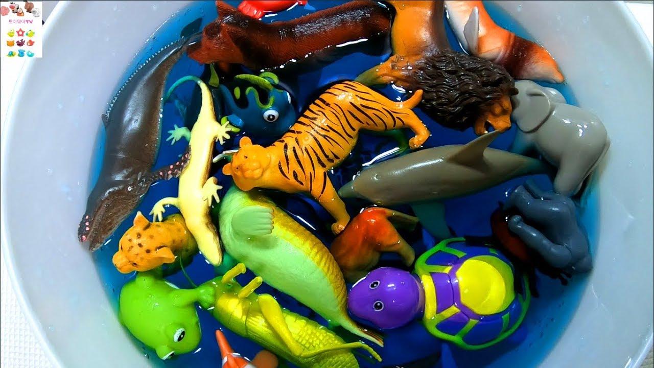 Learn Sea Animals, Farm Animals, Zoo Animals name English korean! 바다동물, 농장동물 동물원동물 이름 배우기 영어