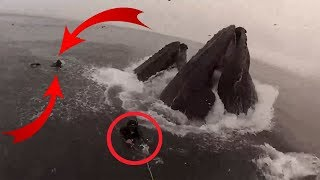 15 Cases Of The Most Dangerous Fishing Caught On Camera