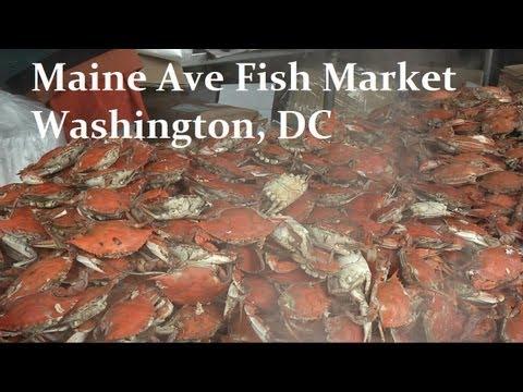 Maine Ave Fish Market - Fresh Crab in Washington DC #foodporn #food #travel #DC