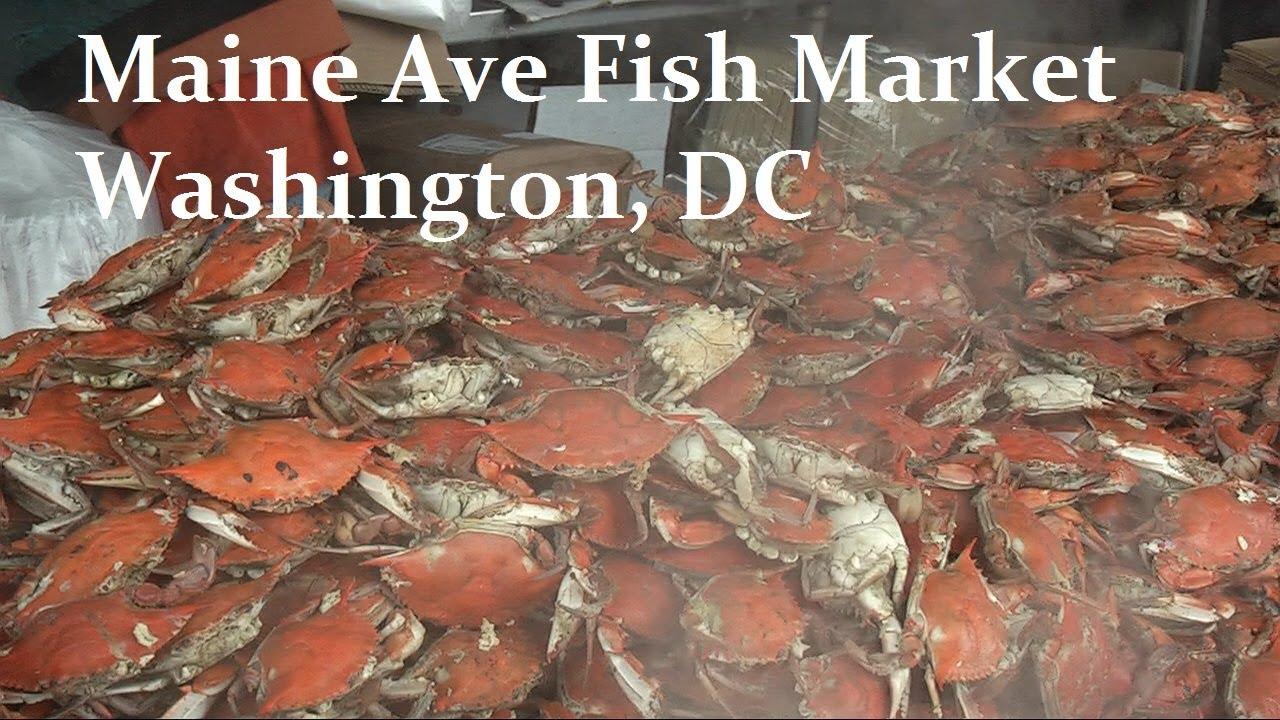 Maine ave fish market fresh crab in washington dc for Maine fish market