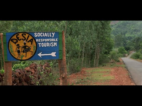 Desia Tourism Camp