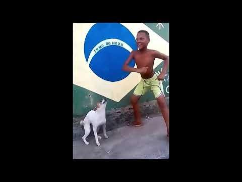 Perrito bailando canción de el niño que hace como perro