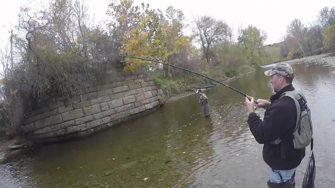 Fishguynate steelhead fishing elk creek erie pa youtube for Steelhead fishing pa