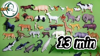 Learn animal names and sounds for toddlers