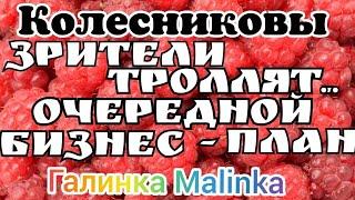 Колесниковы /Зрители троллят Лешу/Очередной бизнес- план//Обзор Влогов //