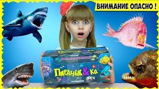 Самые ОПАСНЫЕ рыбы на ЗЕМЛЕ ТОП-21. Собрала КОЛЛЕКЦИЮ игрушек Пиранья & Ko от DeAGOSTINI