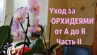 Уход за ОРХИДЕЯМИ от А до Я. Часть II.(Уход за орхидеями: подробно о грунте, о подходящем горшке. Также из этого видео Вы узнаете, как правильно..., 2016-01-03T23:39:45.000Z)