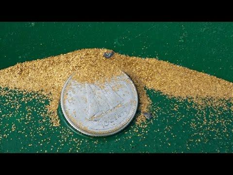 Gold Prospecting on the North Saskatchewan River  Aug 21 2016