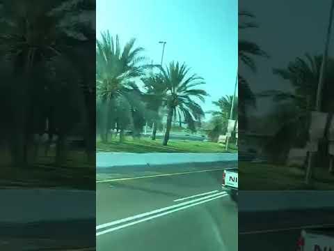 Sheikh Zayed Grand Mosque Abu dhabi #Shorts I Hello Dubai