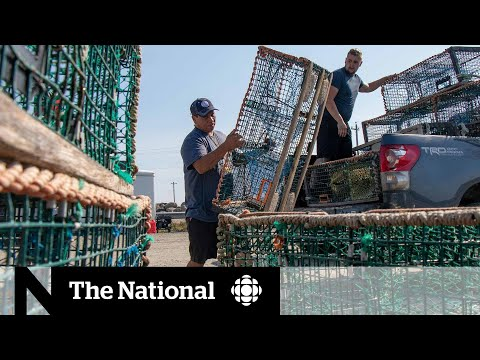 Judge Issues Injunction To End Violence And Threats Against Sipekne'katik Fishery