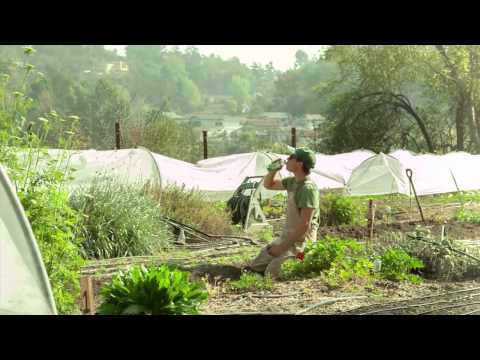 Organic Flower Farmer