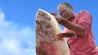 Open Sea Fishing At Sungai Besar, Kuala Selangor