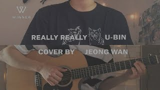 Gambar cover WINNER (위너) - REALLY REALLY cover by 유빈 X 정완