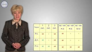 Русский 10 Окончания имен существительных и глаголов  Окончания имен прилагательных и причастий