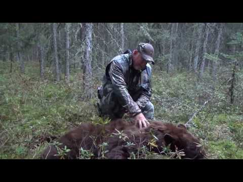 2017 Bear Camp At Cormorant