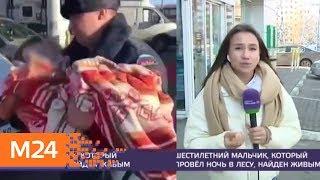 У ребенка, который потерялся в парке 'Лосиный остров', обнаружили переохлаждение - Москва 24