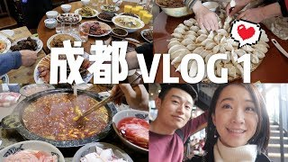 CHENGDU VLOG 1 | 跟我回成都啦-年夜饭、太古里、第一顿火锅! thumbnail